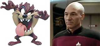 Picard vs. Tazmanian Devil